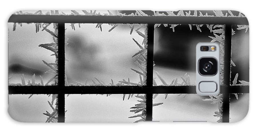 Ice Spikes On The Other Side Of The Fence Galaxy S8 Case featuring the photograph We Are On The Other Side by Christine Dekkers