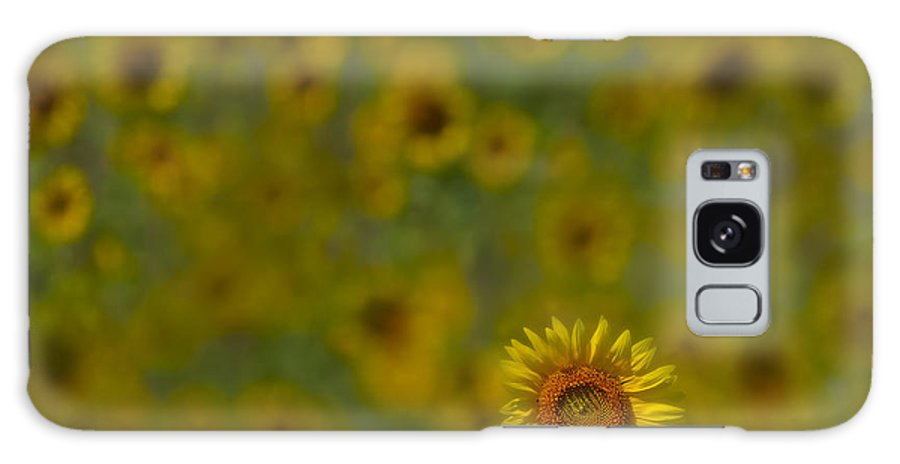 Petals Galaxy S8 Case featuring the photograph We Worship The Sun by Susan Candelario