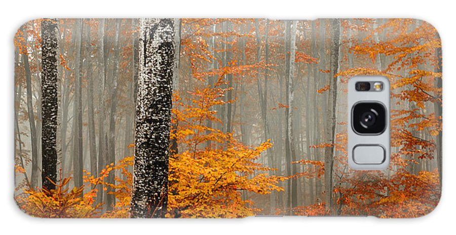 Mist Galaxy S8 Case featuring the photograph Welcome To Orange Forest by Evgeni Dinev