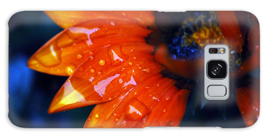 Daisy Galaxy S8 Case featuring the photograph Wet Petals by Lori Tambakis