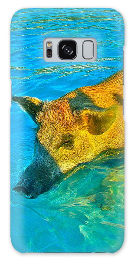 Pigs Galaxy S8 Case featuring the photograph When Pigs Swim by Kim Pippinger