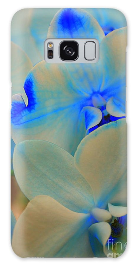 Orchid Galaxy S8 Case featuring the photograph White And Blue Orchid by Dora Sofia Caputo Photographic Design and Fine Art