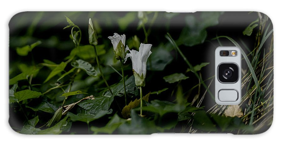 Flower Galaxy S8 Case featuring the photograph White Db by Leif Sohlman