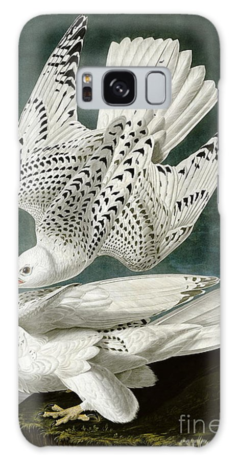 Louisiana Heron Galaxy Case featuring the drawing White Falcon by Celestial Images