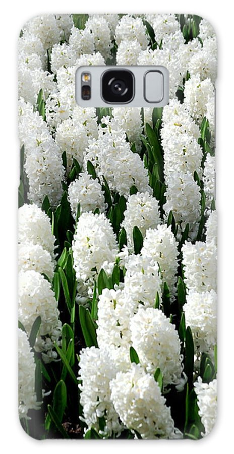 Flower Galaxy S8 Case featuring the photograph White Hyacinths by Glenn Aker