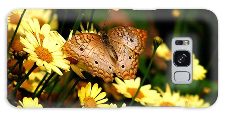 White Peacock Butterfly Galaxy S8 Case featuring the photograph White Peacock Butterfly I I by Marilyn Smith