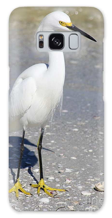 Snowy Egret Galaxy S8 Case featuring the photograph White Silky Feathers by Christiane Schulze Art And Photography