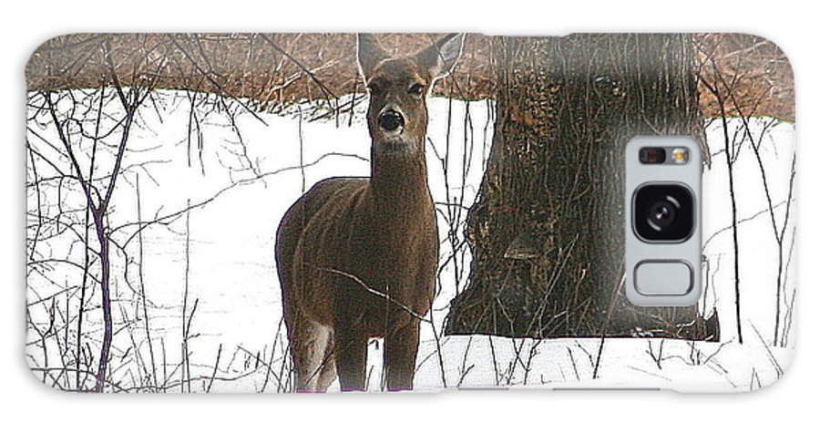 Deer Galaxy S8 Case featuring the photograph White-tailed Winter Stand by Neal Eslinger