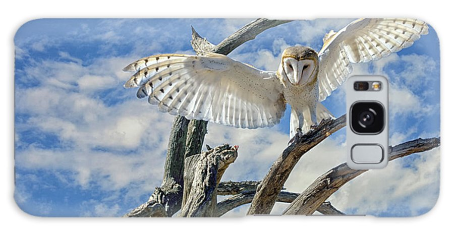 Barn Owl Galaxy S8 Case featuring the photograph White Wide Wings by Evelyn Harrison