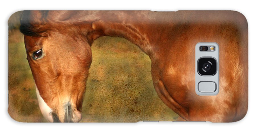 Horse Galaxy S8 Case featuring the photograph Wild by Angel Ciesniarska