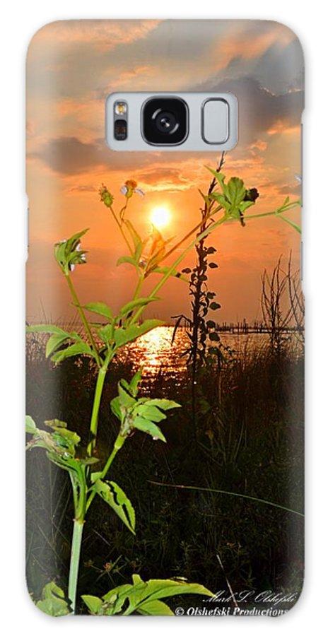 Sunrise Galaxy S8 Case featuring the photograph Wild Flower Ia Mlo by Mark Olshefski