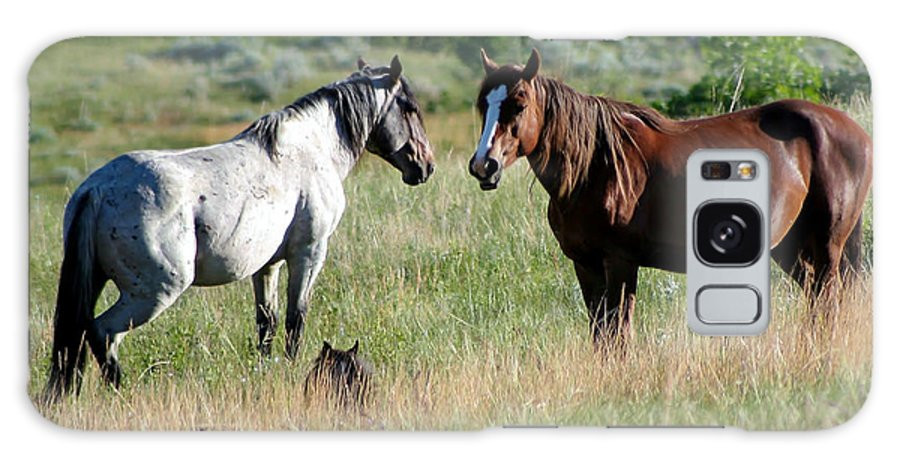 Animal Galaxy S8 Case featuring the photograph Wild Horses In Medora by Sabrina L Ryan