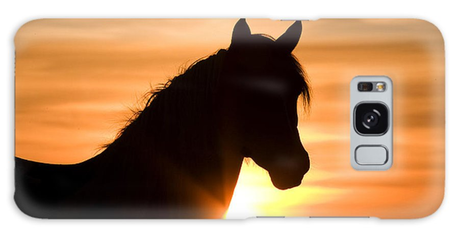 Horse Galaxy S8 Case featuring the photograph Wild Stallion At Sunrise by Carol Walker