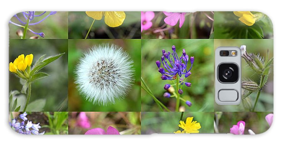 Wildflowers Galaxy S8 Case featuring the photograph Wildflowers Mosaic by Bishopston Fine Art