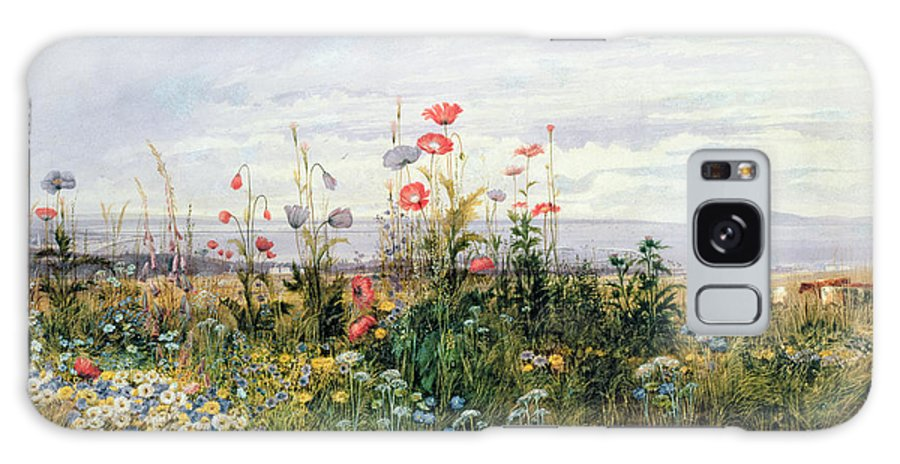 Meadow; Flowers; Irish; Wild; Landscape; Poppies Galaxy Case featuring the painting Wildflowers with a View of Dublin Dunleary by A Nicholl