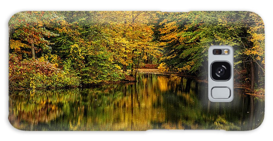 Whillet Galaxy S8 Case featuring the photograph Willett Autumn Reflections by Don Dennis