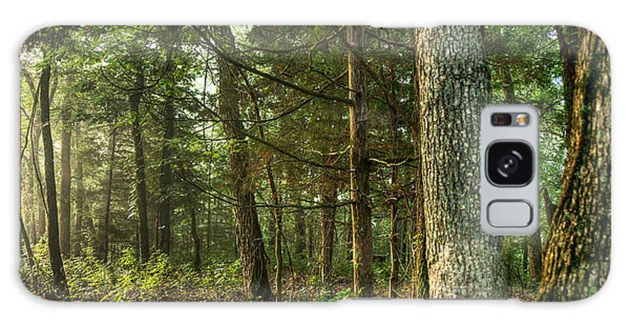 William's Woods Galaxy S8 Case featuring the photograph William's Woods by William Fields
