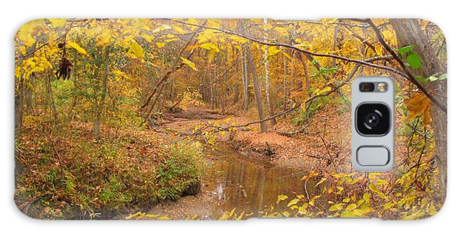 Nature Galaxy S8 Case featuring the photograph Winding Creek by Matt Taylor