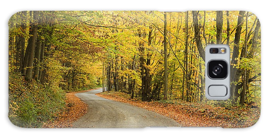 Red Galaxy S8 Case featuring the photograph Winding Rural Road With Fall Colors by Vikas Garg