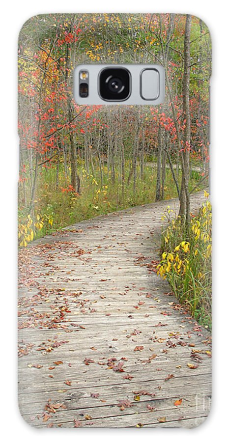 Autumn Galaxy S8 Case featuring the photograph Winding Woods Walk by Ann Horn