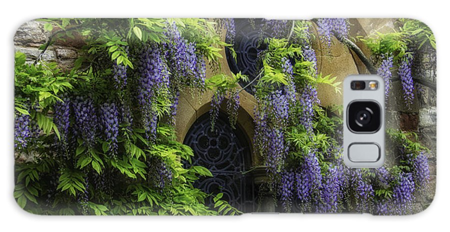 Great Britain Galaxy S8 Case featuring the photograph Window Behind Wisteria by Christine Czernin-Morzin
