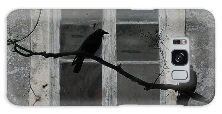 Crows Outside Galaxy S8 Case featuring the photograph Window Dressing by Gothicrow Images