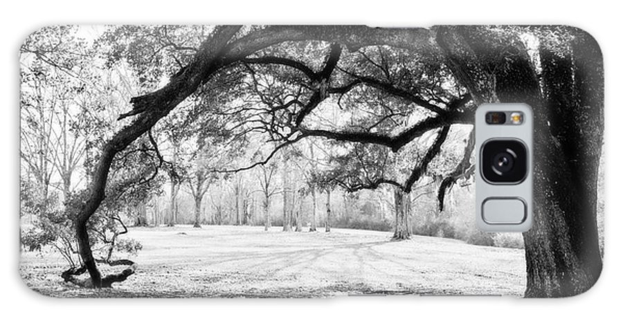 Black&white Galaxy S8 Case featuring the photograph Window Oak - Bw by Scott Pellegrin