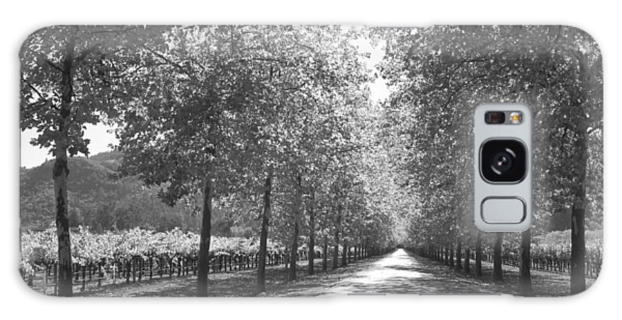 Black And White Galaxy S8 Case featuring the photograph Wine Country Napa Black And White by Suzanne Gaff