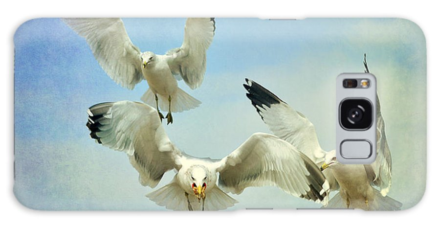 Seagulls Galaxy S8 Case featuring the photograph Winner Takes All 3 by Fraida Gutovich
