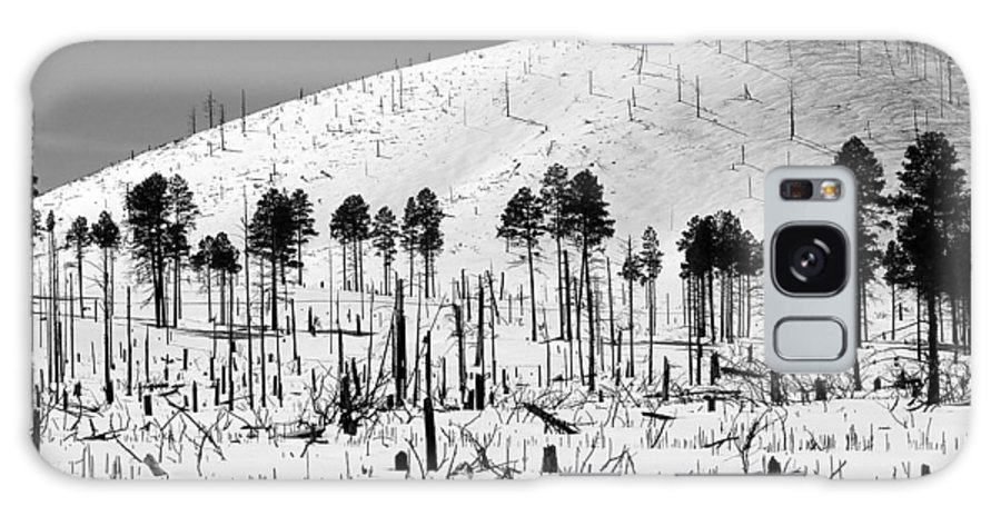 B&w Galaxy S8 Case featuring the photograph Winter After Fire-san Francisco Peaks by Jeff Brunton