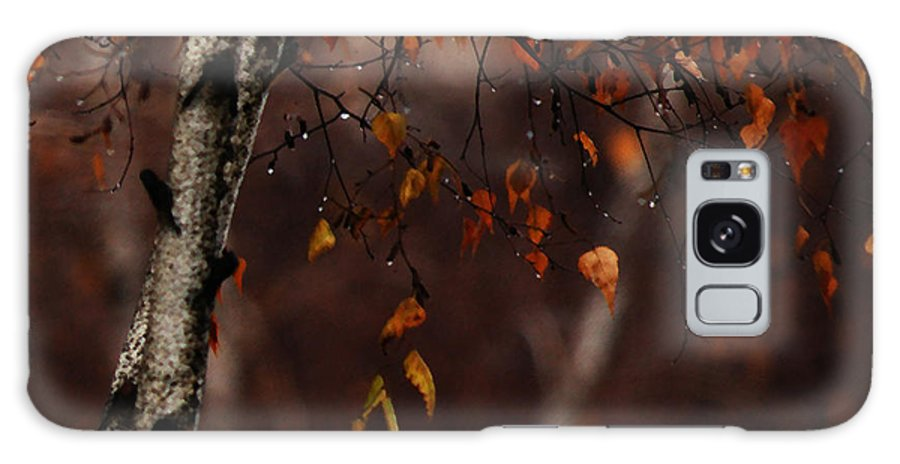 Tree Galaxy S8 Case featuring the photograph Winter Birch by Linda Shafer
