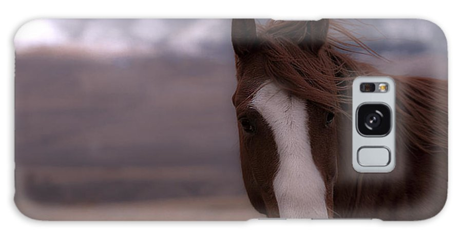 Horse Galaxy S8 Case featuring the photograph Winter Day On The Ranch by Kevan Garecki