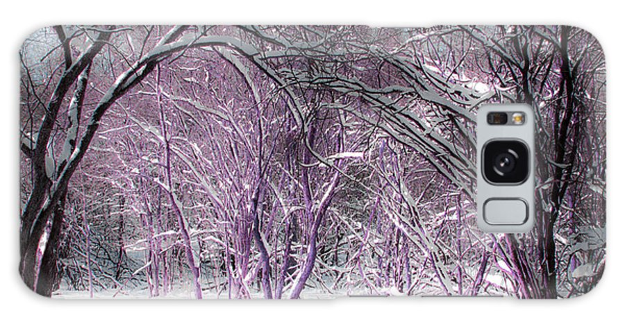 Winter Galaxy S8 Case featuring the photograph Winter Faeries by Barbara McMahon