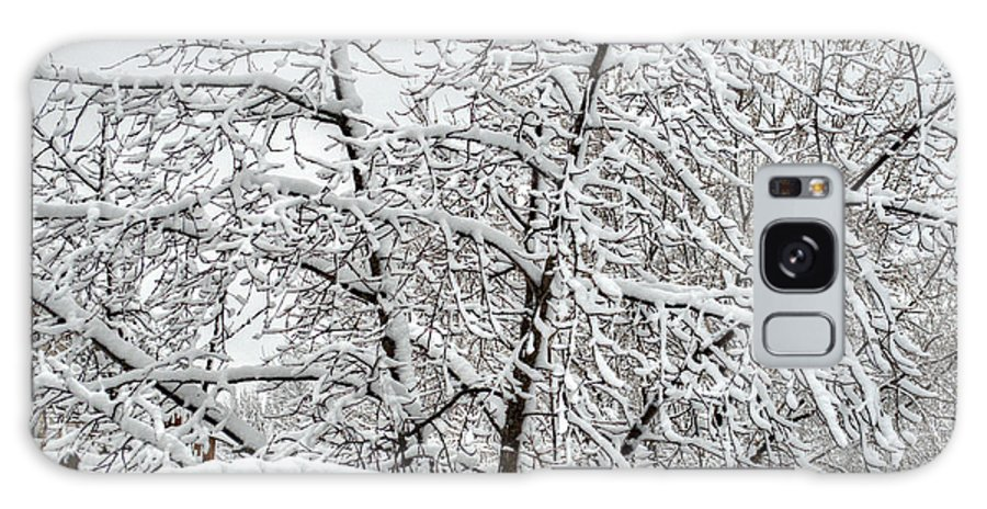 Winter Galaxy S8 Case featuring the photograph Winter In The Heartland 1 by Deborah Smolinske