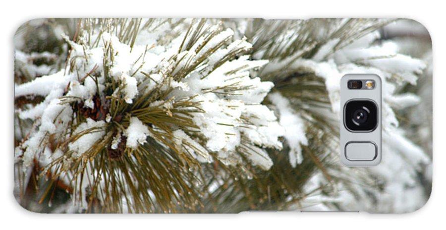 Winter Galaxy S8 Case featuring the photograph Winter In The Heartland 10 by Deborah Smolinske
