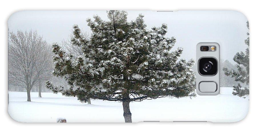 Winter Galaxy S8 Case featuring the photograph Winter In The Heartland 11 by Deborah Smolinske