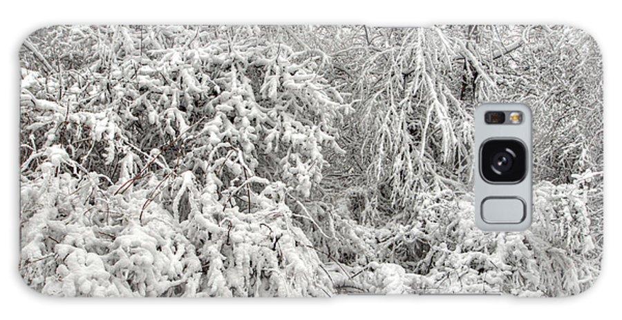 Winter Galaxy S8 Case featuring the photograph Winter In The Heartland 12 by Deborah Smolinske