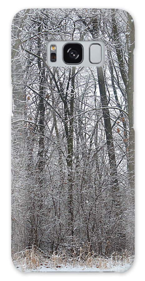 Winter Galaxy S8 Case featuring the photograph Winter In The Heartland 8 by Deborah Smolinske
