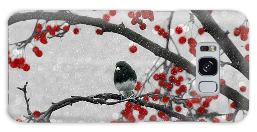 Junco Galaxy S8 Case featuring the photograph Winter Junco by Jackson Pearson