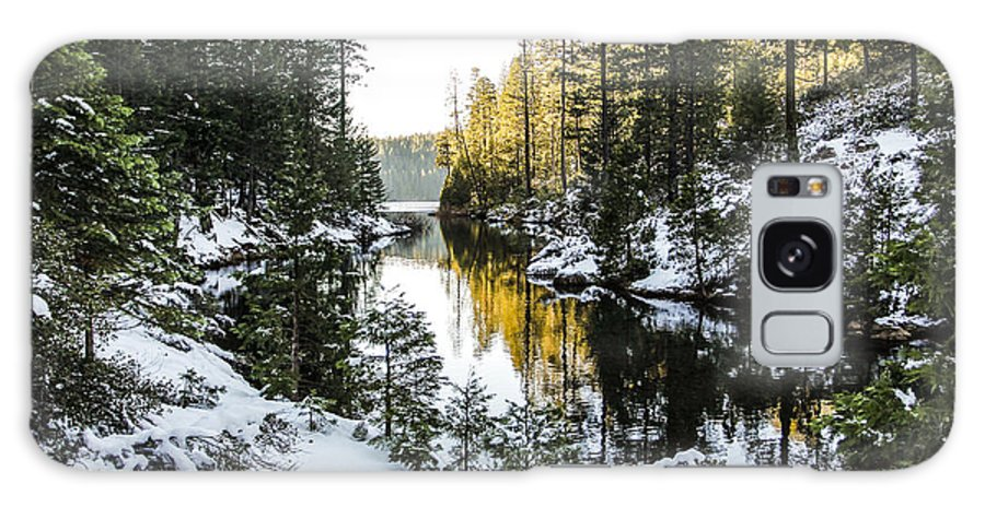Forest Galaxy S8 Case featuring the photograph Winter Lake by Philip Tolok