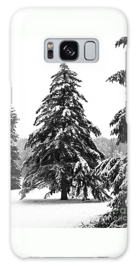 Winter Galaxy S8 Case featuring the photograph Winter Pines by Ann Horn