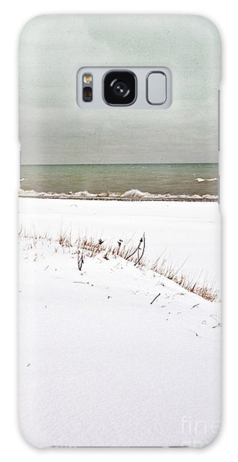Winter; Season; Cold; Wintery; Blustery; Snow; Ground; White; Grasses; Dead; Brown; Water; Lake; Pond; Horizon; Sea; Ocean; Blue; Sky; Clouds; Cloudy; Waves; Seascape; Foam; Minimal; Beautiful; Lovely; Serene; Alone; Bay Galaxy S8 Case featuring the photograph Winter Scene by Margie Hurwich