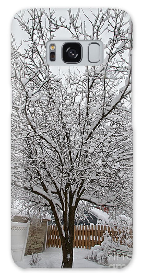 Snow Galaxy S8 Case featuring the photograph Winter Tree 7 by William Norton