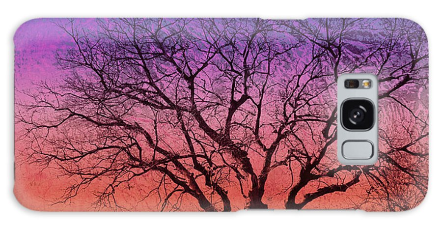 Tree Galaxy S8 Case featuring the photograph Winter Tree by Ann Powell