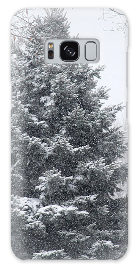 Trees Galaxy S8 Case featuring the photograph Winter Tree by The Art Of Marilyn Ridoutt-Greene