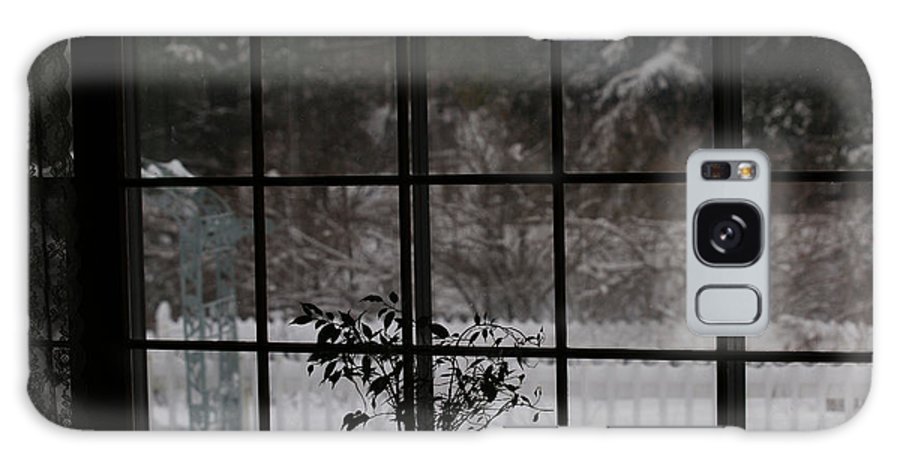 Reflection Galaxy S8 Case featuring the photograph Winters Reflection by Linda Shafer