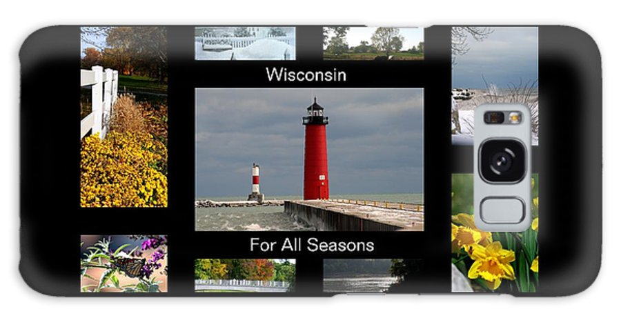Wisconsin Galaxy S8 Case featuring the photograph Wisconsin For All Seasons by Kay Novy