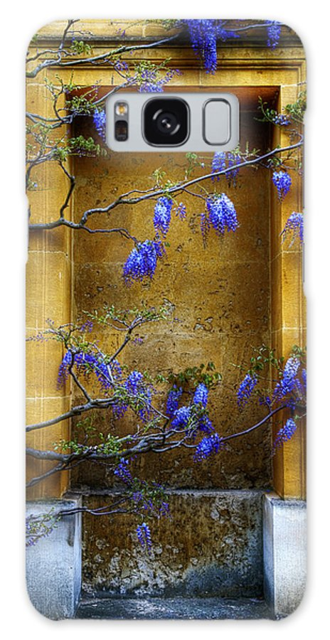Wisteria Galaxy S8 Case featuring the photograph Wisteria Wall by Mick House