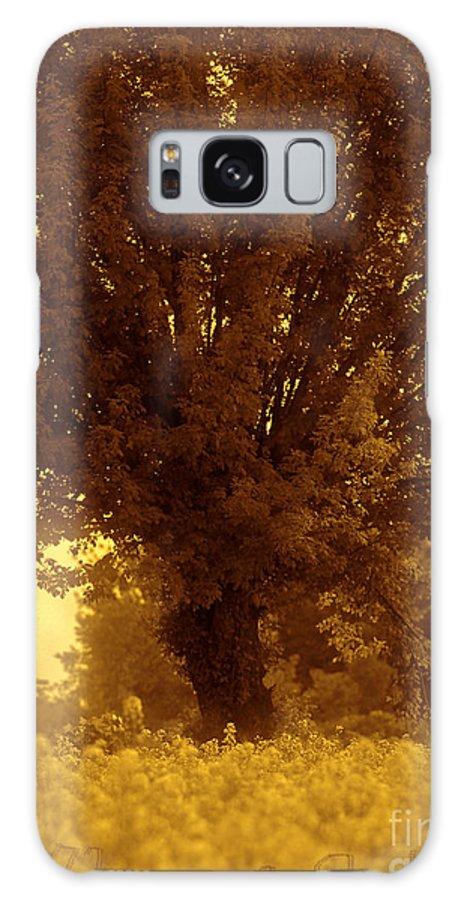 Andgoszcz Fine Art Galaxy S8 Case featuring the photograph Wonderful World. by Andrzej Goszcz