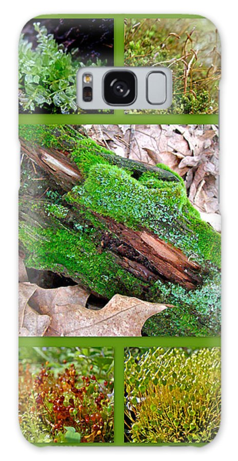 Moss Galaxy S8 Case featuring the photograph Woodland Mosses by Mother Nature